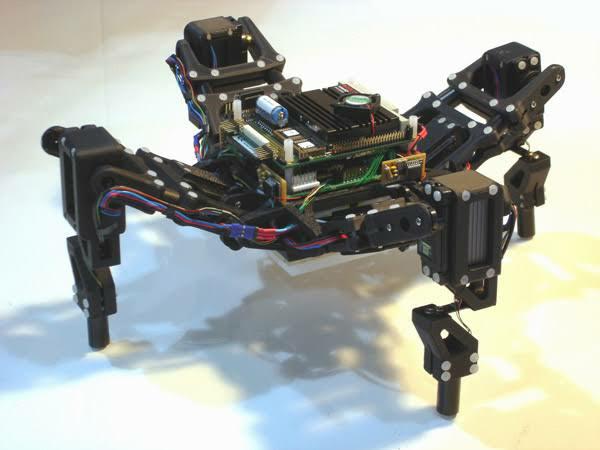कामयाबी :  वैज्ञानिकों ने पहला सजीव रोबोट बनाया