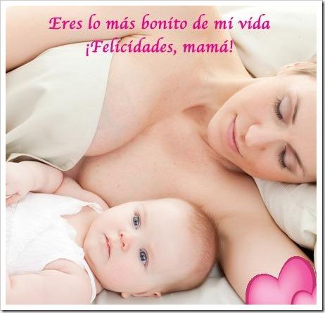 dia de la madre  tratootruco (6)