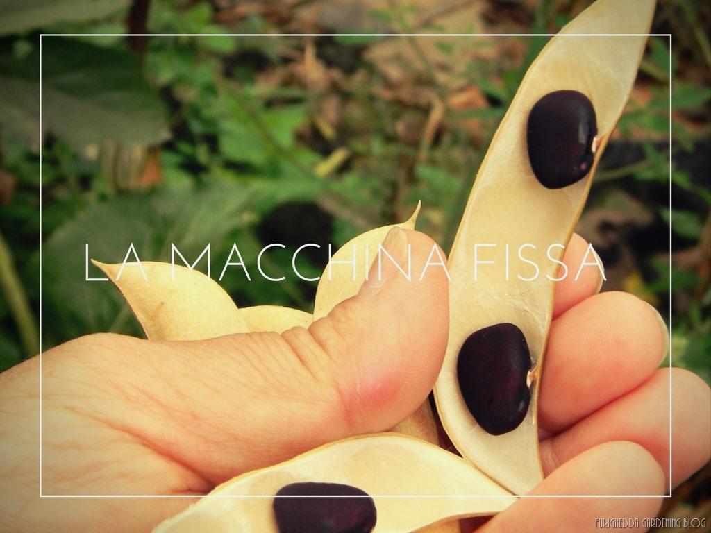 [La+Macchina+Fissa+19%5B5%5D]