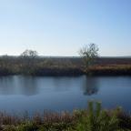 Озеро Круглое Подгоренский район 013.jpg
