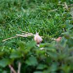 20140419_Fishing_Shpaniv_033.jpg