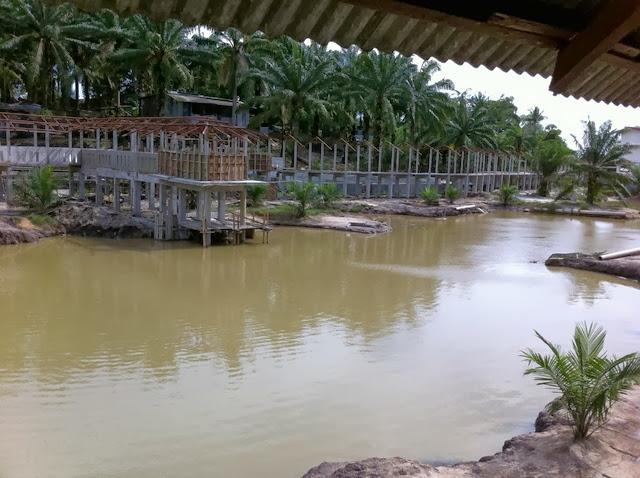 Taman-Buaya-Teluk-Sengat-Crocodile-Farm-Teluk-Sengat