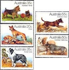 Dogs of Australia
