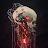 Will Holmer avatar image