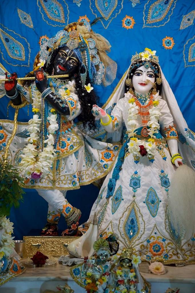 ISKCON New Govardhan Deity Darshan 08 Dec 2016 (20)