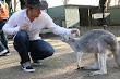 Afc Adam Lyons Pickup Artist In Zoo 5