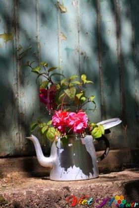 Biến ấm dựng nước cũ thành lọ hoa