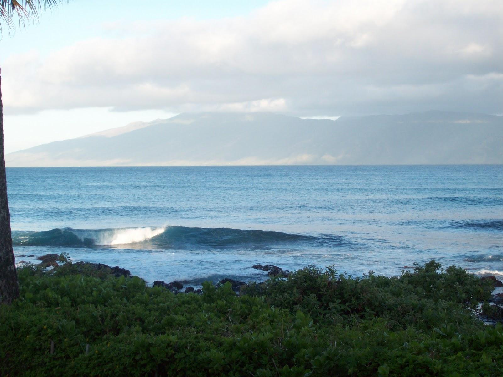 Hawaii Day 6 - 114_1683.JPG