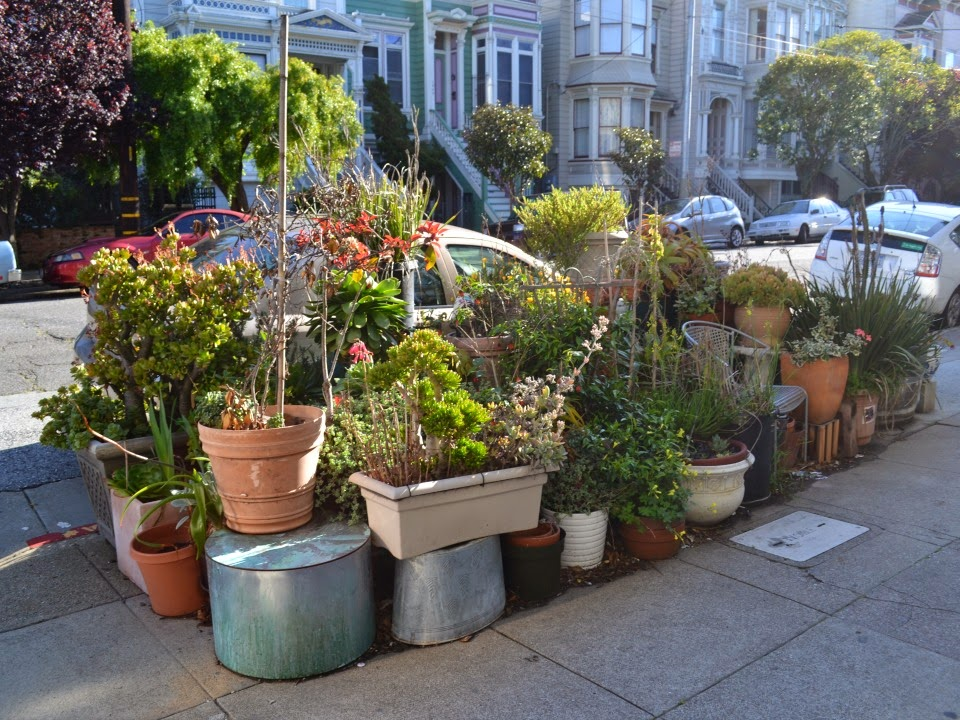 Exceptional Now, However, Urban Garden Aficionados Have A New Resource Available.  Friends Of The Urban Forest Can Provide Funding, DPW Approval, And The  Know How To Get ...