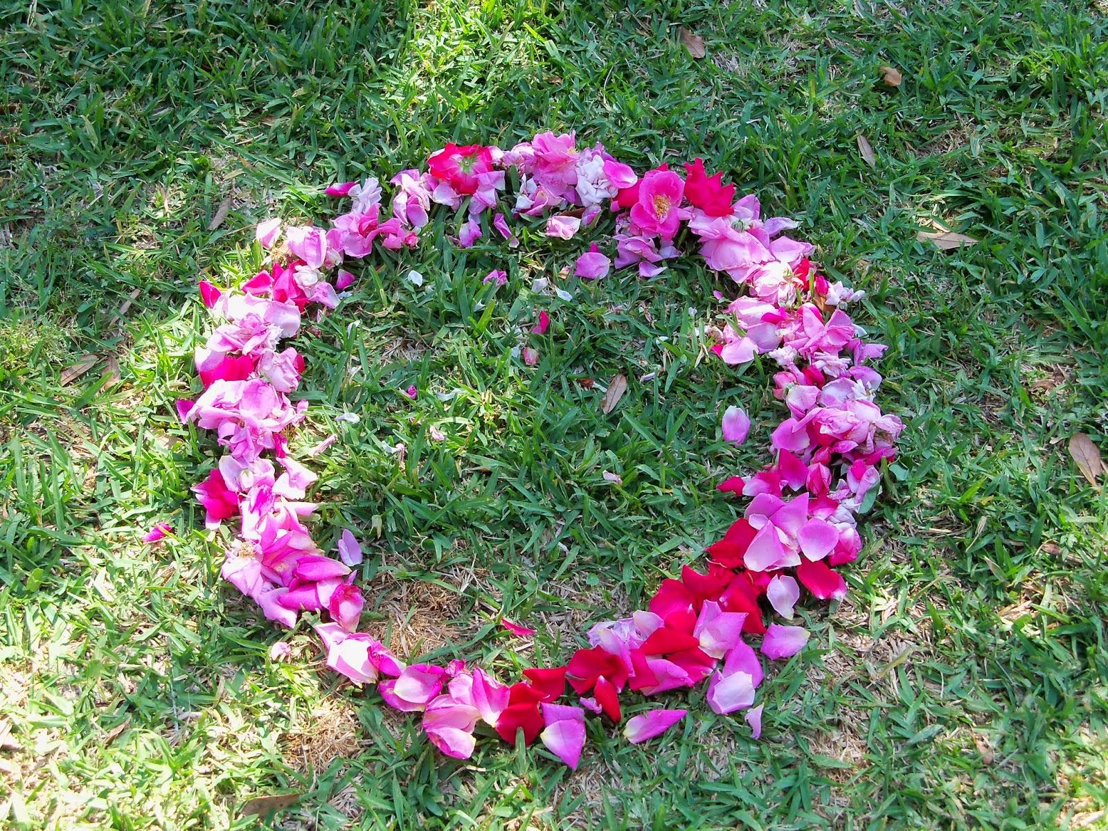 Gardening 2014 - 116_1539.JPG