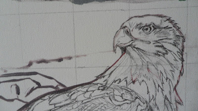 Work in Progress, Sketch on canvas. Source shows close up of Resting white-tailed eagle head.