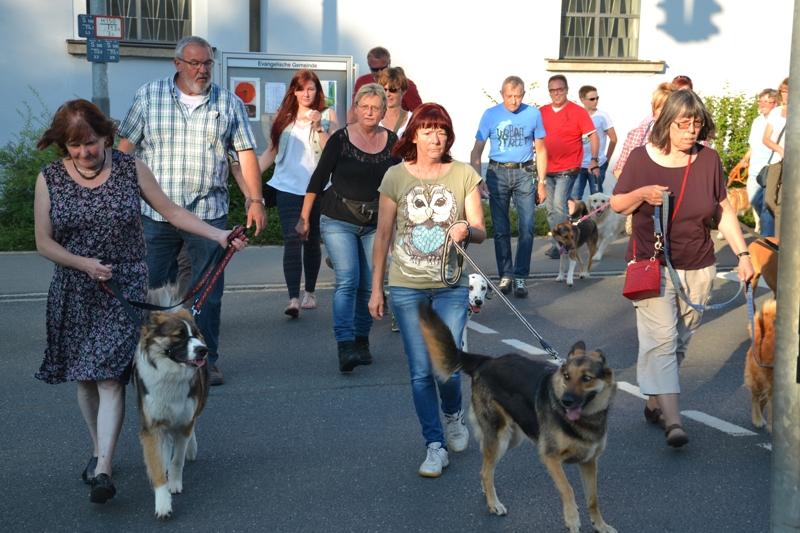 On Tour in Tirschenreuth: 30. Juni 2015 - DSC_0023.JPG