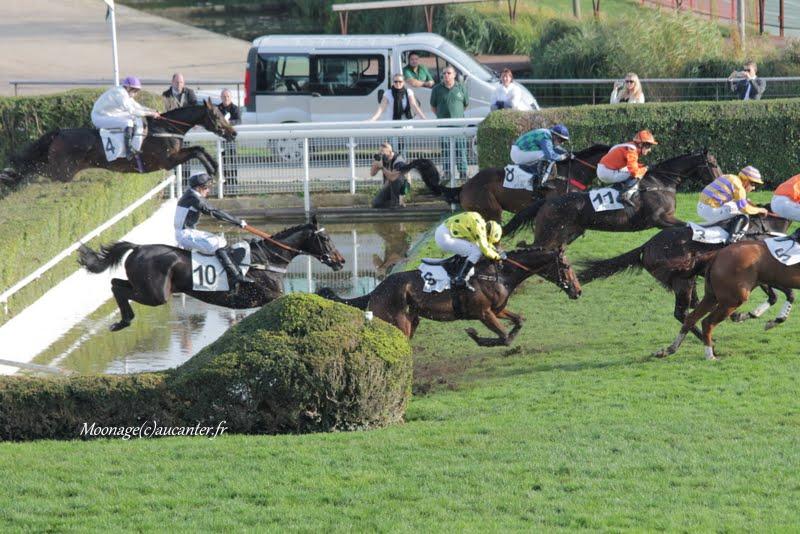 Photos Auteuil 8-11-2015 (48h de l'obstacle) IMG_7027