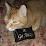Joan Van Dyke's profile photo