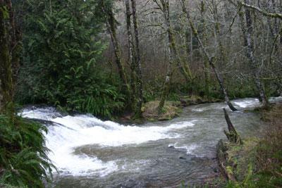 Flood stage at Delezene Falls