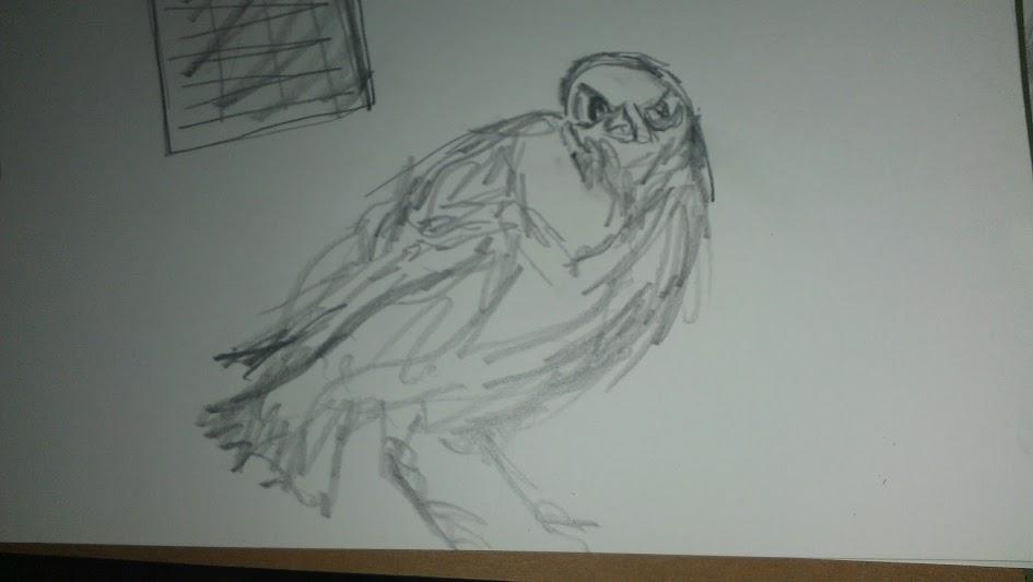 Curious Raven sketch