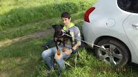 3-я Новопокровская выставка охотничьих собак, май 2016 г.