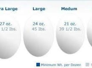 The size of the egg is very important in baking. Most recipes state how...