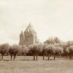 Kopbomen en kerk_BEW.jpg