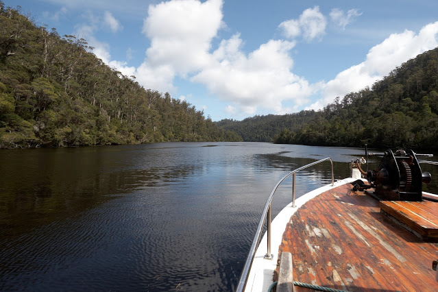 View from the Arcadia II as we cruise down the Pieman river from Corinna