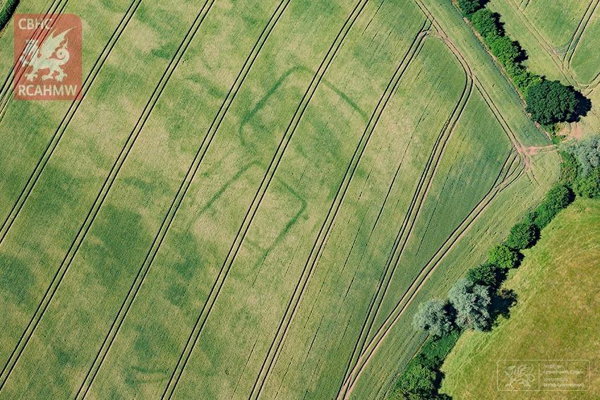 crop-marks-7