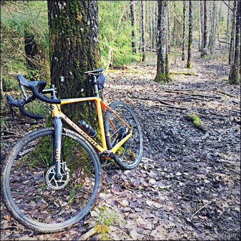 Testar Cyclocross i Skogen