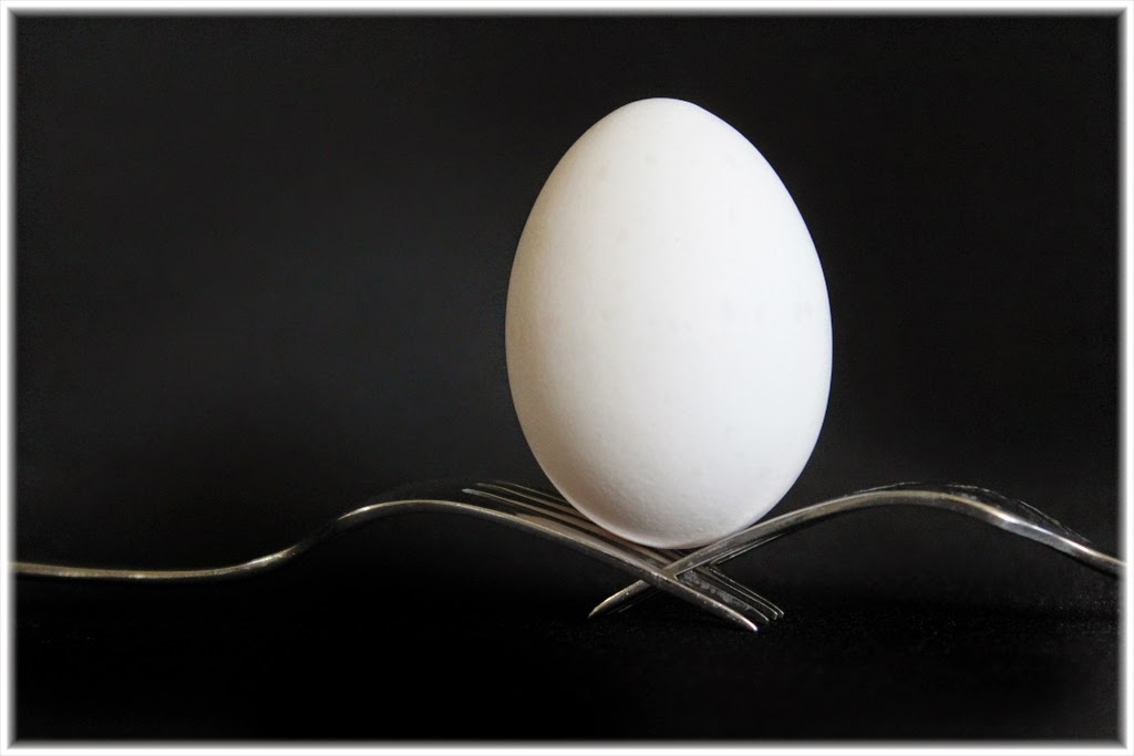 """Egg Sample"" by Barbara Lippert - 3d Place A Special"