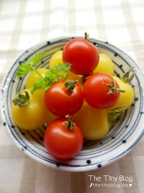 Bento Okazu Cherry Tomatoes
