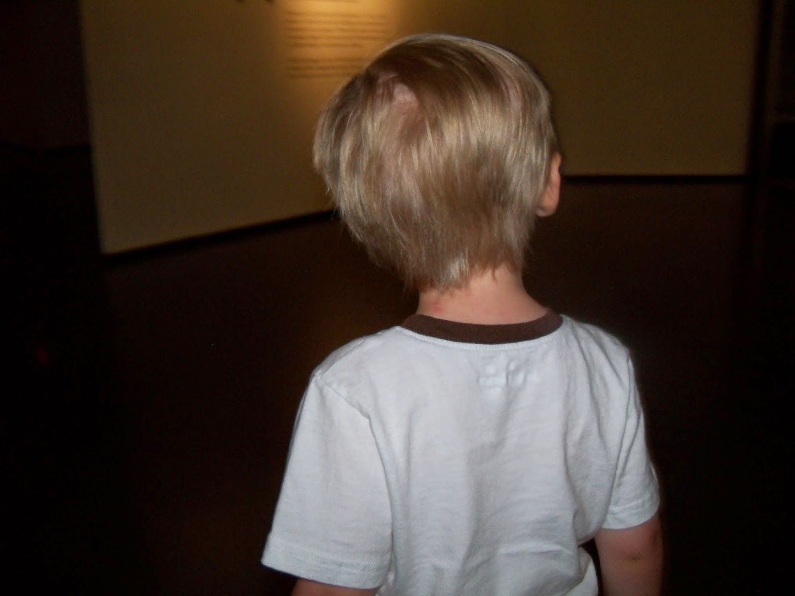 Houston Museum of Natural Science - 116_2688.JPG