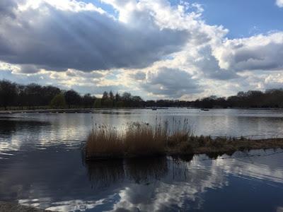 Hyde Park river