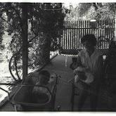 n026-032-1968-tabor-szigliget.jpg