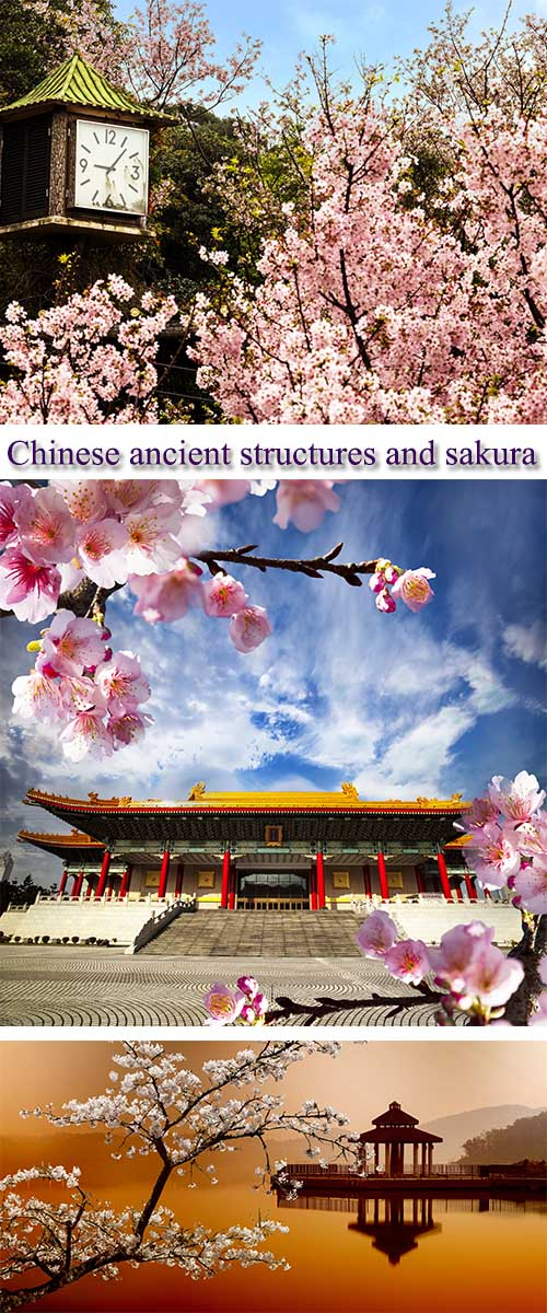 Stock Photo: Chinese ancient structures and sakura, postcard for adv or others purpos