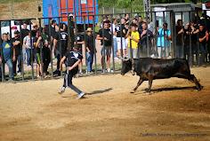 083-peña taurina linares 2014 285.JPG
