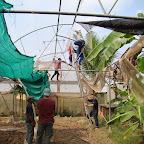 Repair the roof of green house 2013.jpg