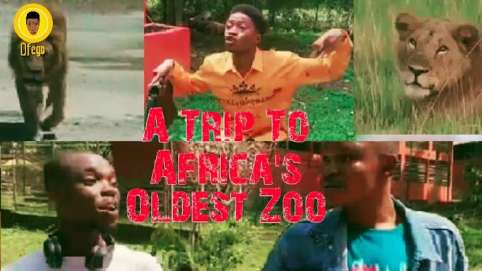 A Trip To Africa's Oldest Zoo