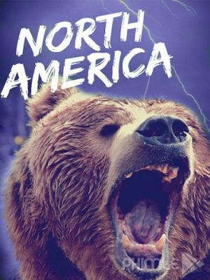 Phim Thiên Nhiên Hoang Dã Bắc Mỹ - North America (2013)