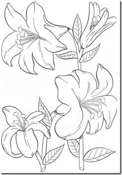 11flores primavera colorear  (39)