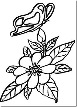 11flores primavera colorear  (4)