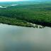 Mata Atlântica é o bioma com maior captação de água do país