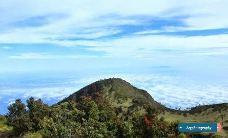 Ari Blog Pendakian Gunung Lawu 3265 Mdpl Via Cemoro Sewu