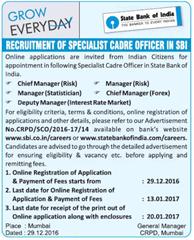 SBI Specialist Cadre Officer 2017 indgovtjobs