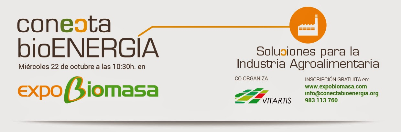 Conecta bioENERGIA para la industria agroalimentaria