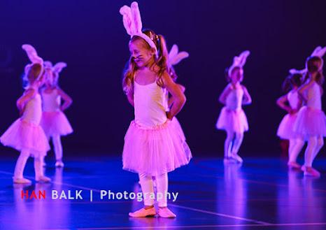 Han Balk Voorster Dansdag 2016-3438.jpg