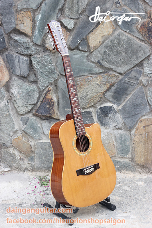 Guitar Acoustic 12 Dây