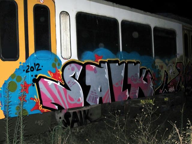 salk (6)