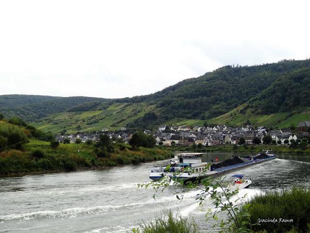 passeando - Passeando pela Suíça - 2012 - Página 21 DSC08456