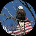 Full Clad Eagle