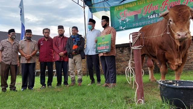 Serahkan Sapi Kurban Jokowi, Gubernur Irwan Sebut Rp700 Miliar Perputaran Uang Jual Beli Ternak di Sumbar