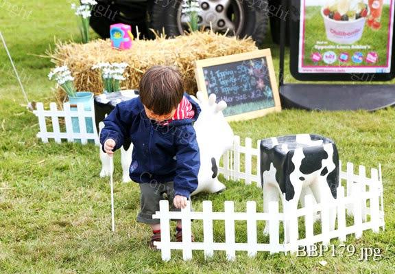 THE CHILDRENS ADVENTURE FARM TRUST - BBP179.jpg