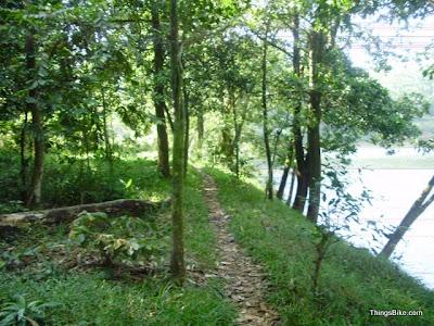 trek jalur bersepeda kawasan hutan ui